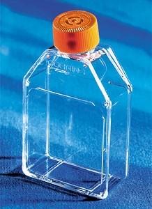 25cm² 培养瓶 透气盖