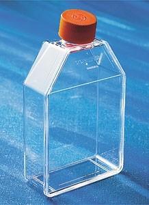 75cm²  培养瓶 透气盖