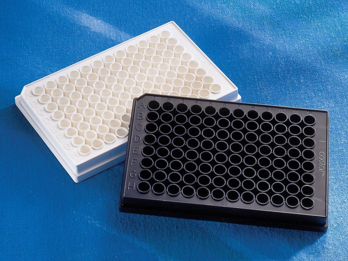 96孔板 黑色 平底 半区 未处理表面 未灭菌