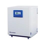 二氧化碳培养箱BPN-80RHP-触摸屏-高档型