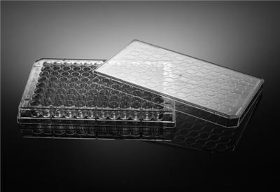 96孔细胞培养板,平底,TC