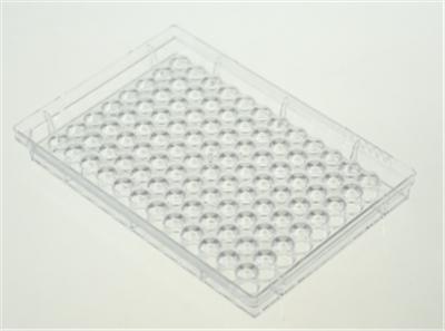 96孔细胞培养板,V底,TC
