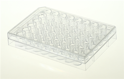 48孔细胞培养板,平底,TC