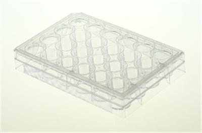 24孔细胞培养板,平底,TC