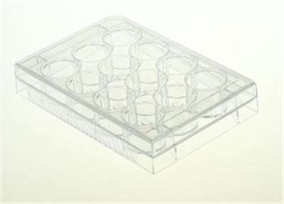 12孔细胞培养板,平底,TC