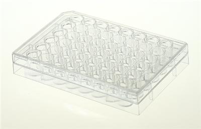 48孔细胞培养板,平底,未TC