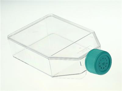 T75细胞培养瓶,透气盖,TC