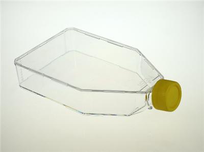 T175细胞培养瓶,密封盖,未TC
